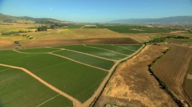 Agricultural fields farming crops — Stock Video