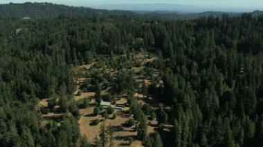 Aerial California USA farmland forest hills nature daylight — Stock Video