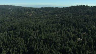 Aerial California USA farmland forest nature daylight — Stock Video