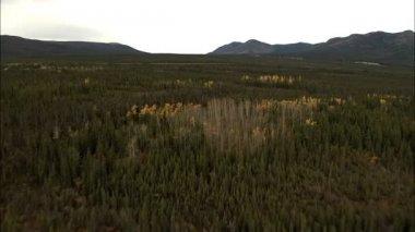 Aerials Trans Alaskan Oil Pipeline — Stock Video