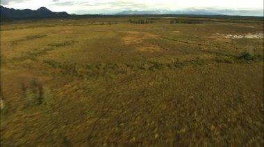 Alaska National Park Wilderness tundra — Stock Video