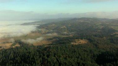 Oregon agricultural field arable farmland — Stock Video