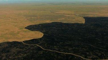 Aerial Idaho USA burned farming land crops field ozone — Stock Video