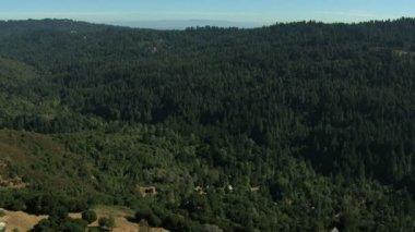 Aerial California USA farmland forest nature daylight — Vídeo de Stock