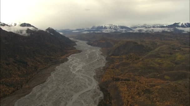 Bosque aéreo de Alaska con derretir agua — Vídeo de stock