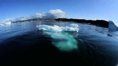 Ilulissat Disko Bay Coastal Melting Icebergs — Stock Video