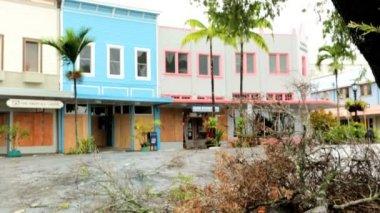 Hawaii Tropical Hurricane protection — Stock Video