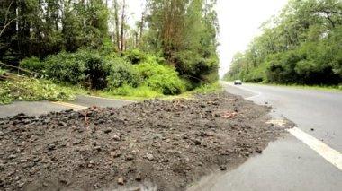 Island devastation aftermath Hurricane Iselle — Stock Video