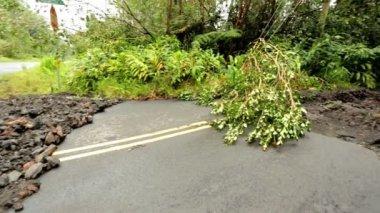 Damage aftermath flash flooding Hilo area — Stock Video