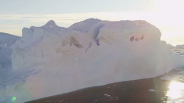 Glaciers Frozen Mass Disko Bay Greenland — Stock Video