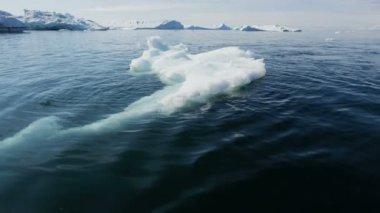 Disko Bay iceberg environment frozen seascape — Stock Video