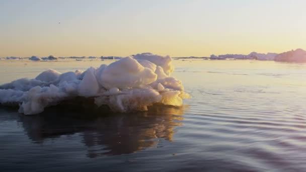 Icebergs Disko Bay Greenland Denmark — Vídeo de stock