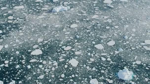 Disko Bay Greenland Floating Ice Mass — Vídeo de stock