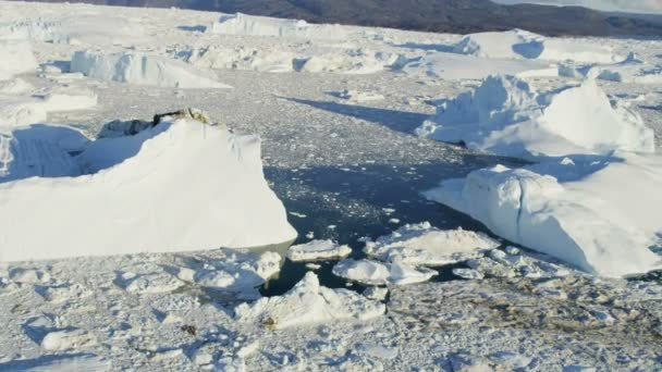 Témpanos de hielo ártico de Groenlandia — Vídeo de stock