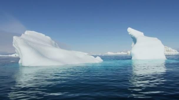 Greenland drifting iceberg fjord — Vídeo de stock