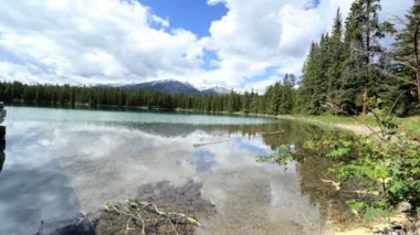 Wilderness transparent Lake mountain forest — Stock Video