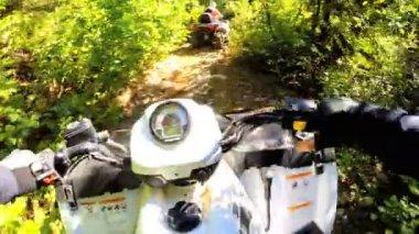 フォレスト内の道路クワッド バイクを運転 — ストックビデオ