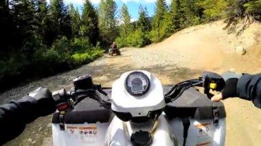 Jízdy mimo silniční čtyřkolky v lese — Stock video