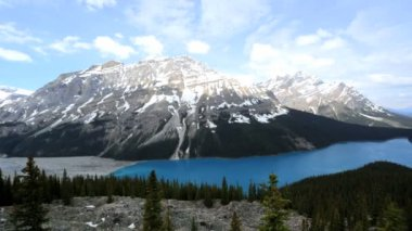 Scenery Icefields Parkway Canada — Stock Video