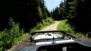 Jeep driving through mountain forest — Stock Video
