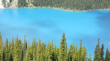 Parkway Canada blue refraction color lake water — Stock Video