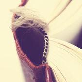 Libro viejo — Foto de Stock
