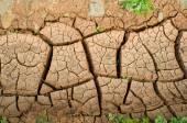 Soil erosion, dry ground — Stock Photo