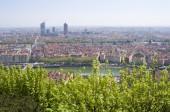 Lyon Cityscape view — Stock Photo