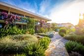 Otel Bahçe ve Teras — Stok fotoğraf