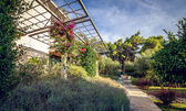 Hotel garden and terrace — Stock Photo