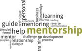 Word cloud - mentorship — Stockvektor