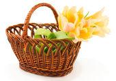 Orande Tulips in basket — Stock Photo