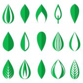 Green simple leaves — Stock Vector