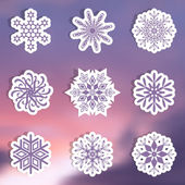 Snowflake labels — Stock Vector