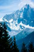 Snow Alps peaks high above the forest — Stock Photo
