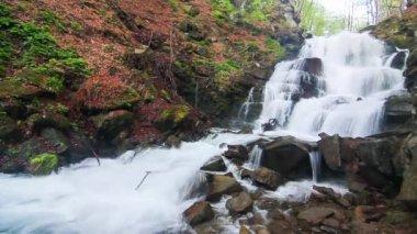 Peaceful Waterfall — Stock Video
