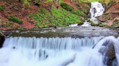 Wonderland. Wonderful waterfall in mystery forest. — Stock Video