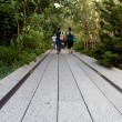 High Line.  New York City. Elevated pedestrian Park — Stock Photo #59751873