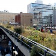 High Line.  New York City. Elevated pedestrian Park — Stock Photo #59751991
