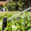 Garden Irrigation system sprinkler watering flowerbed and lawn. — Stock Photo #76852399