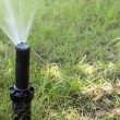 Garden Irrigation system sprinkler watering lawn. — Stock Photo #76852969