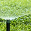 Garden Irrigation system spray watering lawn. — Stock Photo #76855033