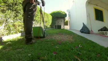 Home Gardening Activity - Electric Lawn backyard mowing, cutting the grass detail. — Stock Video