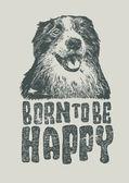 Dog Border Collie — Stock Vector