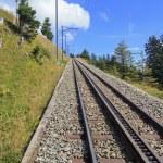 Rack Railway on the Mt. Rigi — Stock Photo #53760707