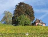 Landscape in Baden, Switzerland — Stock Photo