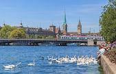 Lake Zurich — Stock Photo