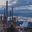 Grangemouth oil refinery complex  — Stock Photo #53951921