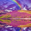 Colorful landscape scenery of rainbow over hill slope covered by — Stock Photo #53952771