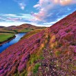 Beautiful landscape of scottish nature — Stock Photo #53954843
